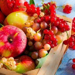 Когда лучше есть фрукты?